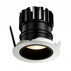 Dino Adjustable LED downlight