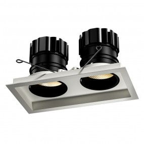 Look Twin adjustable downlight
